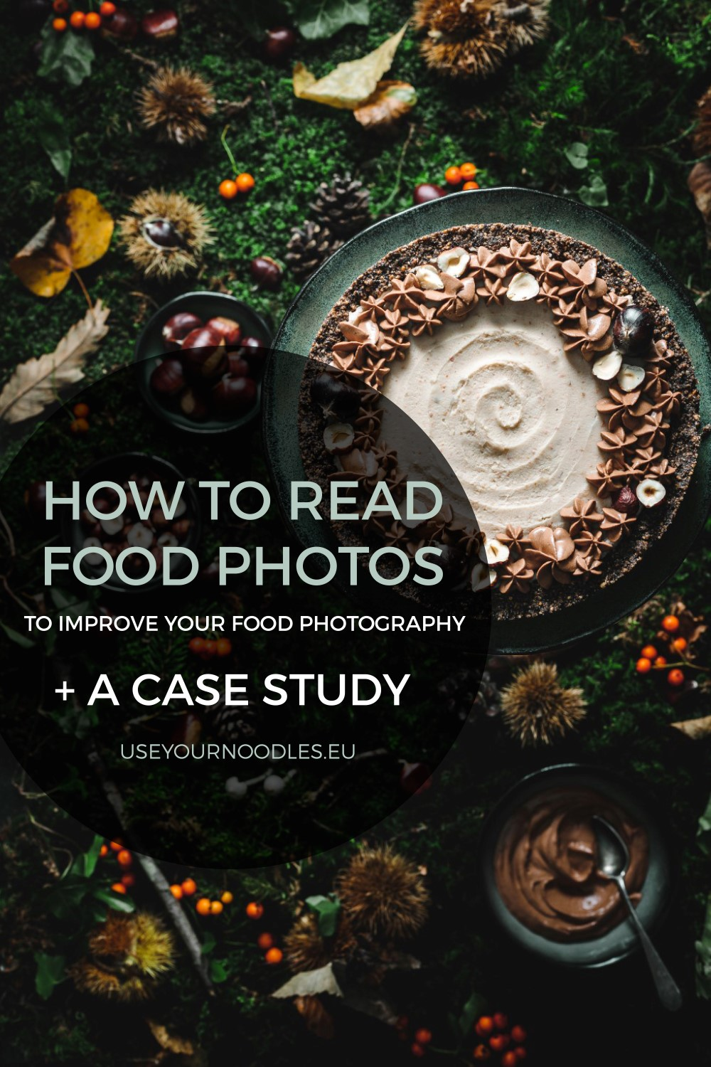 a photo of a chestnut pie on moss for arcticle How to read photos so you can improve your food photography by Anja Burgar from Use Your Noodles blog